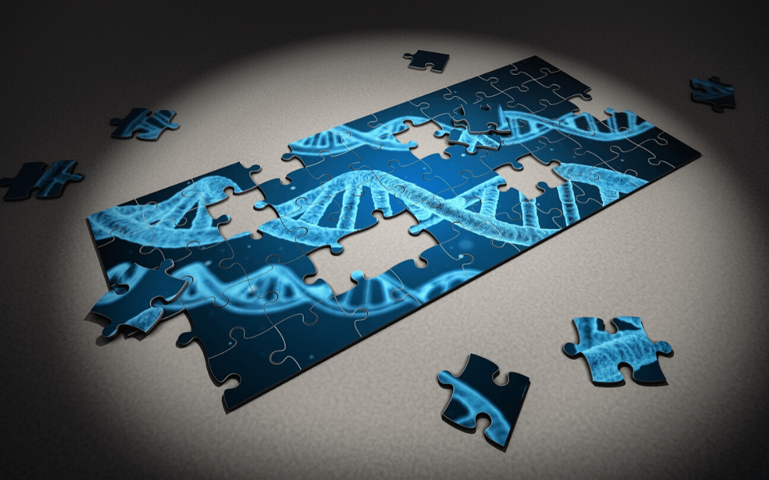 What is DNA Fingerprinting and 10 Practical Ways it is Used